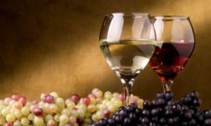Возрождение винного туризма на Кубани