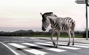 Когда в олимпийсой столице будет наведен порядок с пешеходными зонами?