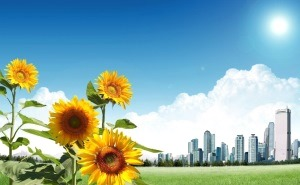Социально-экономическое положение Краснодарского края на 2013 год