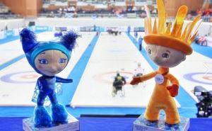 XI Зимние Паралимпийские игры 2014