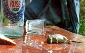 В Краснодаре прикрыли нелегальное производство водки в гараже