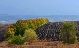 Краснодарский край готов к осеннему севу