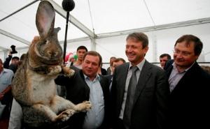 Александр Ткачев посетил сельхозвыставку Кубани