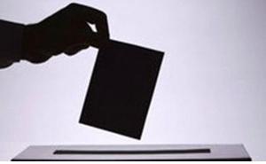 На Кубани провели выборы глав четырех поселений