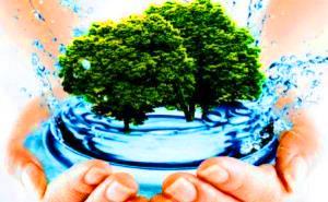 В Краснодаре состоялось заседание экологического общественного совета