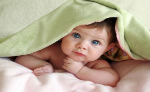 В регионе с помощью ЭКО было рождено 252 малыша