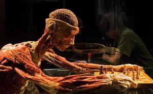 """Епархия Краснодарского края считает, что выставка """"Тайны тела"""" – это оскорбление усопших"""