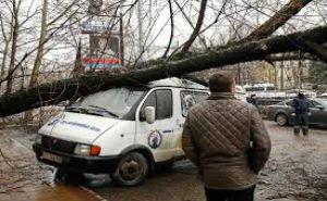 Ледяной дождь нанёс Краснодару ущерб на сумму 538 миллионов рублей