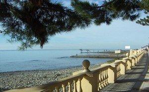 Мэр Сочи: Отвечать в этом году за пляжи будут арендаторы
