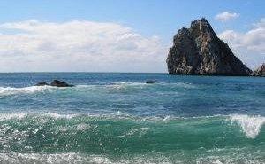 Установлены причины загрязнения акватории Чёрного моря в Сочи