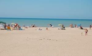 Отныне въезд на пляжи в Малый Утриш и на Бугазскую косу — бесплатный