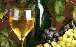 Правительством РФ приняты предложения властей Кубани по развитию виноградарства и виноделия
