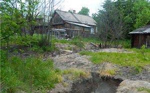У жителей Сочи будут изымать запущенные земельные участки