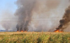 На период хлебоуборочной кампании МЧС Кубани переходит в режим повышенной готовности