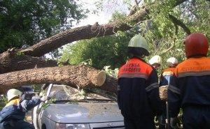 Власти Калининского района из-за стихийного бедствия ввели режим ЧС