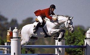 По конному спорту сочинцы — впереди во всём Краснодарском крае и в ЮФО