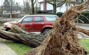 Вчера в Анапе прошёл мощный ураган