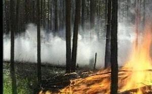 Александр Ткачёв требует усилить работу по профилактике пожаров