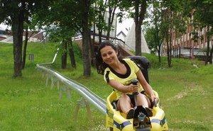 Летом на санях — этот вид отдыха очень популярен в Сочи