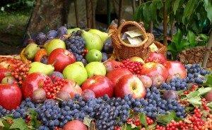 Александр Ткачёв: 50% импорта плодовой продукции в Россию заменит Кубань