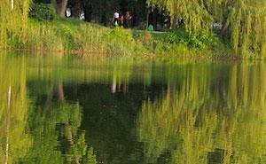 Карасунским прудам хотят придать официальный статус