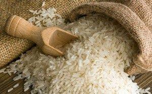 Урожай риса в этом году на Кубани приблизился к цели — 1 млн тонн