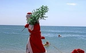 Новый год-2015 туристы предпочитают встречать на Кубани