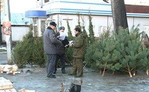 Полицейские Краснодара