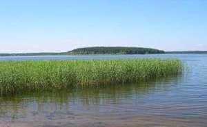 В Краснодаре работают над концепцией благоустройства Карасунских озёр
