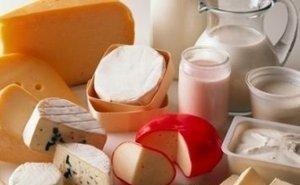 На Кубани должны разработать программу поддержки мясо-молочной отрасли
