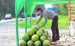 На Кубани началась подготовка дорожного сервиса к курортному сезону
