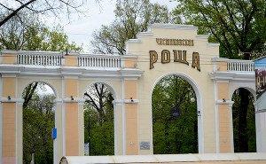 Власти Краснодара отрицают продажу земли у Чистяковской рощи