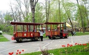 Вениамин Кондратьев против ресторанов и жилых домов в парковых зонах