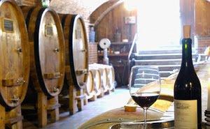 На Кубани продвигают винный и гастрономический туризм