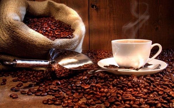 Автоматические кофемашины Saeco – мастера своего дела!