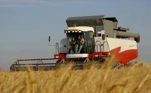 Урожай-2015: Кубань побила собственный рекорд