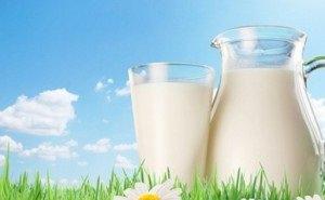 Для молочной отрасли Кубани будет разработана своя стратегия