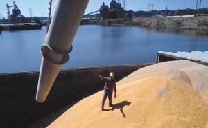 Введение пошлин не снизило экспорт пшеницы через порты Краснодарского края