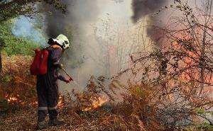 Лесной пожар под Сочи ликвидирован