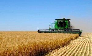Кубань отказалась от субсидий на АПК в 637 млн рублей