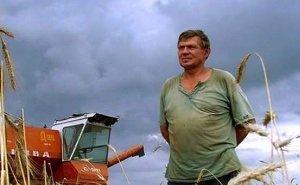 Кубанским строителям советуют заняться сельским хозяйством