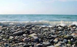 На Кубани создаётся комиссия по надзору за пляжами