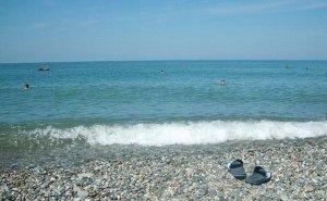 В Сочи проинвентаризируют все пляжи