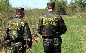 На Кубани требуют усилить меры пожарной безопасности в лесах
