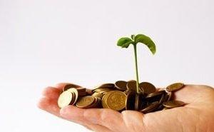 На Кубани ввели новые льготы для инвесторов
