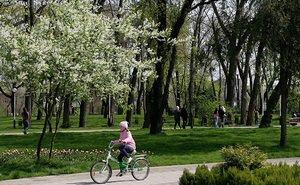 В Краснодаре пытаются помешать застройке зелёных зон