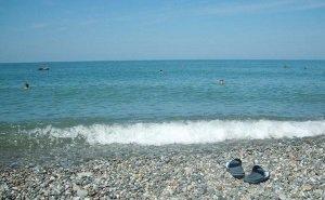 Власти Сочи выступают против взимания платы за проход к пляжам курорта