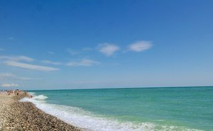 Фонд Ролдугина бесплатно получил два пляжа в Сочи