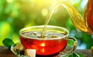 В Сочи прошёл первый чайный фестиваль