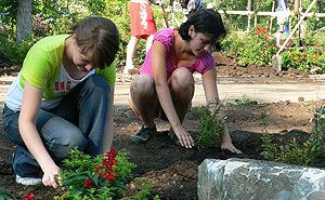 Старшеклассники в Сочи летом смогут подзаработать